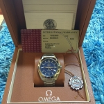 Omega Seamaster Co-Axial GMT - Stainlessฺ Blue Dial
