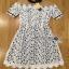 Lady Ribbon Korea Dress &#x1F380 Lady Ribbon's Made &#x1F380 Lady Katie Elegant Feminine Organza and Lace Mini Dress thumbnail 6