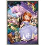 ชุดภาพติดคริสตัลกลม ลายเจ้าหญิงโซเฟีย ( งานติดเต็มภาพ ) ขนาด 35*45 ซม. คริสตัลกลม 36 สี อุปกรณ์ครบชุด