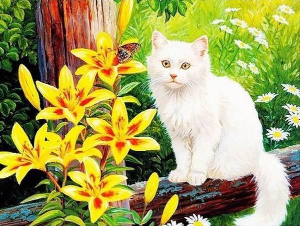 Flower Cat (ไม่พิมพ์ลาย)