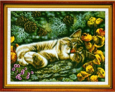 Sleeping cat (พิมพ์ลาย)