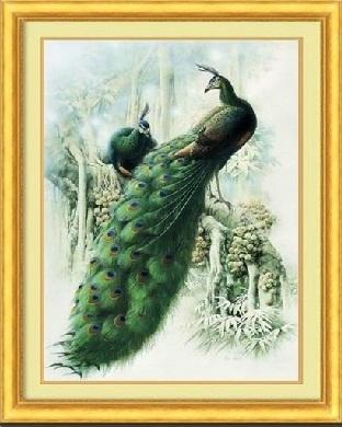 Green Forest Peacock (พิมพ์ลาย)