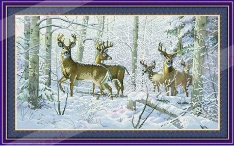 Snowy Deer (พิมพ์ลาย)
