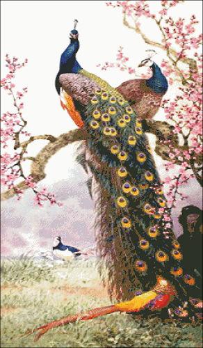 นกยูงคู่ซากุระ (พิมพ์/ไม่พิมพ์ลาย)