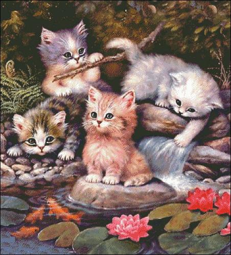 Playing cats (ไม่พิมพ์ลาย)