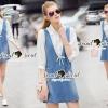 Lady Ribbon Korea Brand SS13300516 Seoul Secret Say's .... Roppy Pinstripe Denim Shirt Dress