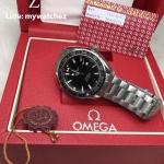 Omega Seamaster Planet Ocean 600M Co-Axial 43.5MM Steel on Steel