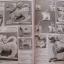 หนังสือมหาโพธิ์ หลวงพ่อเดิม วัดหนองโพธิ์ จ.นครสวรรค์ thumbnail 9