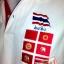 เสื้อโปโลลายธงชาติ ลาย 7 ธง thumbnail 4