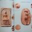 ตำราเซียนหลวงปู่โต๊ะ วัดประดู่ฉิมพลี กรุงเทพมหานคร thumbnail 15