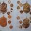 ชี้จุดศึกษาพระหลวงปู่ทิม วัดละหารไร่ ฉบับเหรียญยอดนิยม thumbnail 2