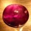 พลอยอเมทิส (Amethyst) พลอยธรรมชาติแท้ น้ำหนัก 8.25 กะรัต thumbnail 3