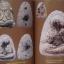 รวมวัตถุมงคล เนื้อผง หลวงปู่ทิม วัดละหารไร่ จ.ระยอง เล่ม 2 โดย นิลนารถ วัฒนธรรม thumbnail 3