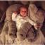 หมอนตุ๊กตาช้าง ขนาด 40cm และ 60cm thumbnail 12