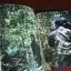 สัตว์วิกาล : ภาพเรืองแสงของ อภิชาติพงศ์ วีระเศรษฐกุล (Unknown Forces) thumbnail 4