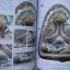 หนังสือรวมเล่มกลเม็ดเคล็ดลับการศึกษาพระเครื่องหลวงปู่บุญ+หลวงปู่เพิ่ม วัดกลางบางแก้ว thumbnail 4