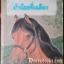ม้าน้อยที่เฉลียง (Pony in the Porch) -AA thumbnail 1