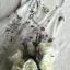 เสื้อผ้าแฟชั่นเกาหลี Lady Ribbon Thailand Seoul Secret Say's ...White Line Dress With Black Fancy Stripes thumbnail 4