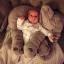 หมอนตุ๊กตาช้าง ขนาด 40cm และ 60cm thumbnail 18