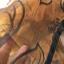 ม่านประตูกันยุงไซส์พิเศษ Hi-end 160x210 ซม.สีน้ำตาล แบบทอลายกำมะหยี่-ดอกไม้ thumbnail 6