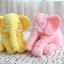 หมอนตุ๊กตาช้าง ขนาด 40cm และ 60cm thumbnail 6