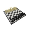 "8"" Garden Chess Set with PVC board"